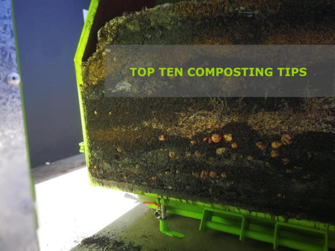Top ten tips[1]