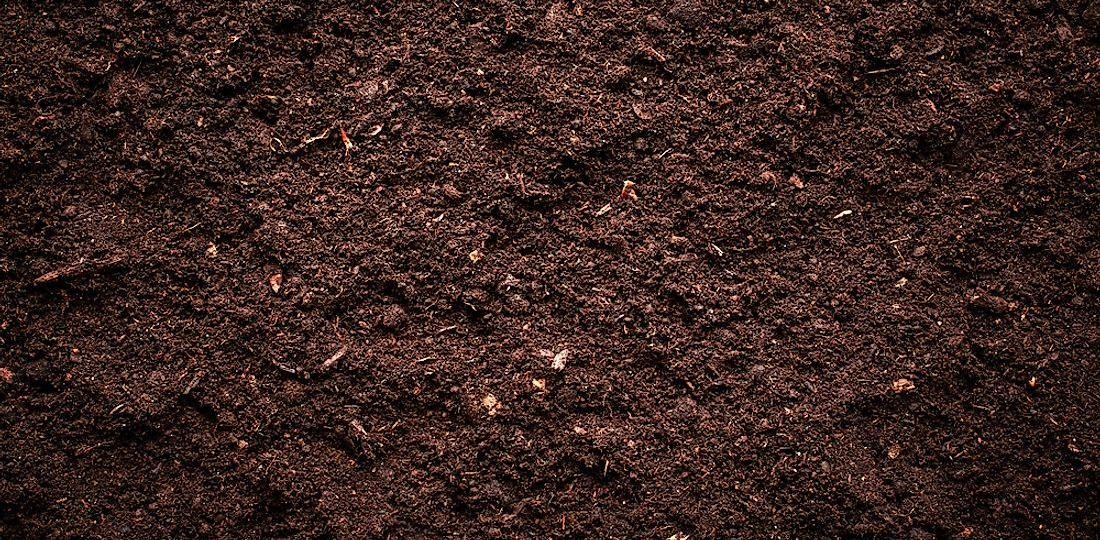 soil-composition-shutterstock